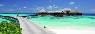 Vos vacances au Coco Bodu Hithi cinq étoiles avec Oovatu