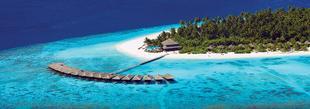 Découvrez l'hotel Filitheyo Island Resort