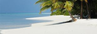 Kuramathi Island Resort avec votre spécialiste oovatu